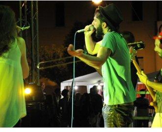 http://www.bredaanancy.com/gallery/live_assud_basilicata/DSC_8622.jpg